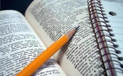 Diplomado en redacción, Gramática y corrección de textos