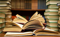 Literatura Neobarroca